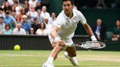 Final Wimbledon en directo   Djokovic vs Anderson