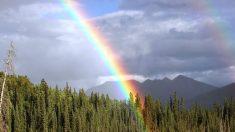 Un bello arco iris.