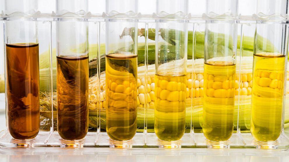 Guía completa de pasos para hacer biodiesel casero