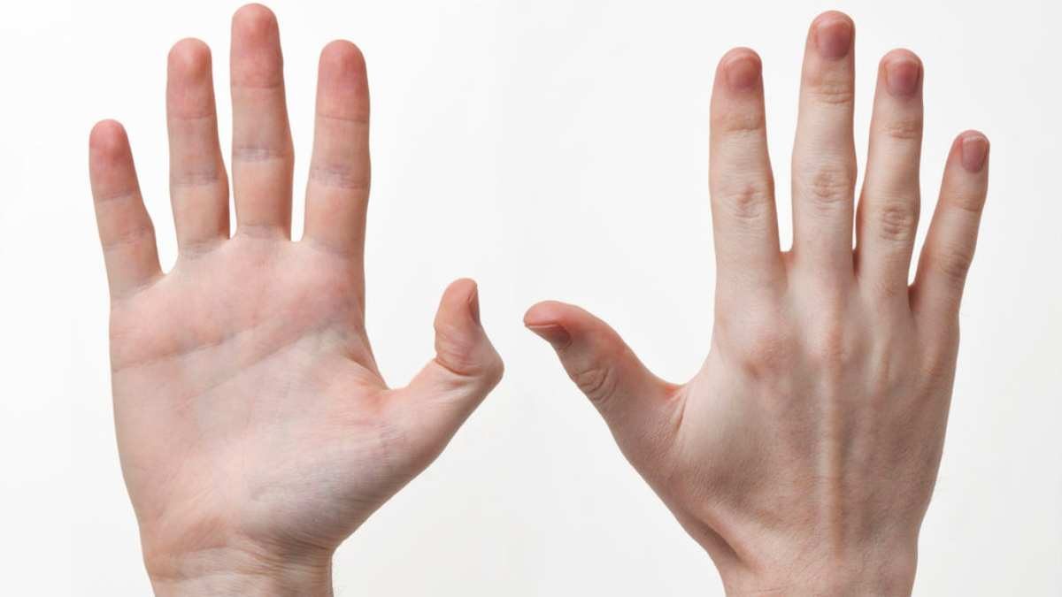 duermen las manos