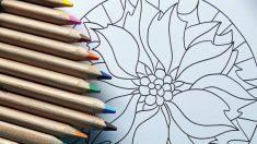 Cómo pintar una mandala en tela paso a paso fácilmente