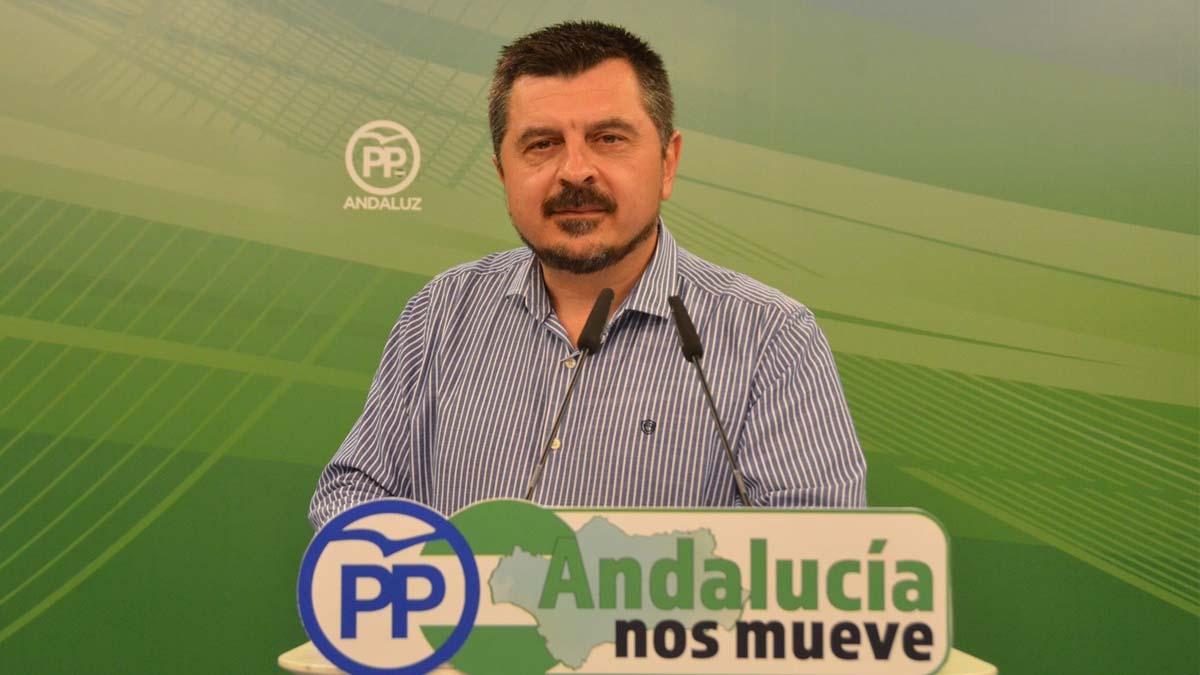 Toni Martin, vicesecretario de Organización del PP andaluz. (Foto: Europa Press).