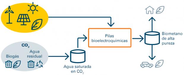 Biogás: una fuente de energía real y comprometida con el medio ambiente