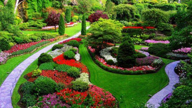 C mo decorar un jard n paso a paso - Jardines verticales paso a paso ...