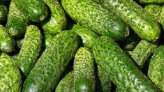 Descubre todos los beneficios que los pepinos pueden aportar a tu salud.