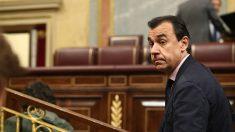 Fernando Martínez-Maillo, en el Congreso. (EP)