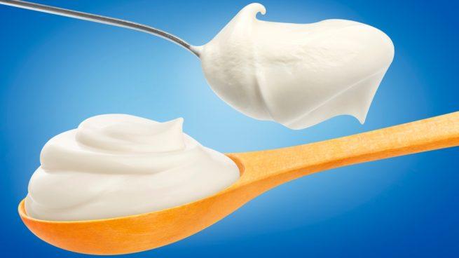 mayonesa con leche de soja
