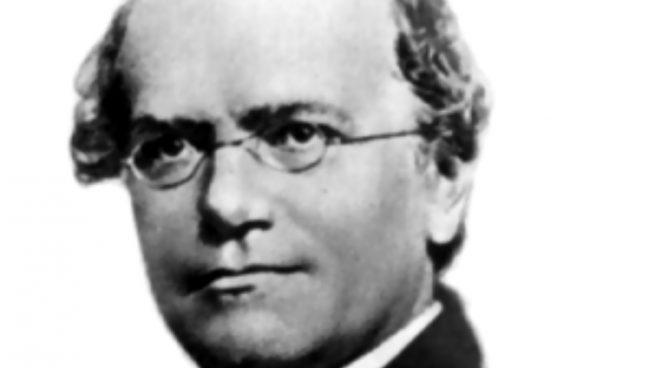 Frases Geniales De Gregor Mendel