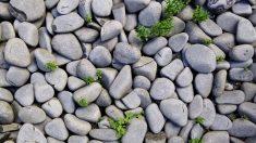 Cómo hacer un muro de piedra en tu jardín u otro espacio exterior