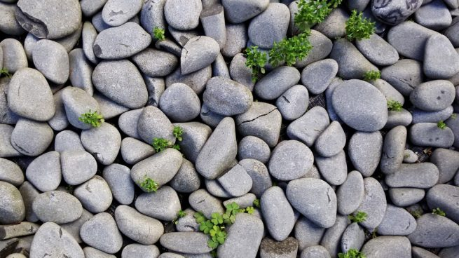 Como Hacer Un Muro De Piedra En Tu Jardin U Otro Espacio Exterior - Piedra-jardin