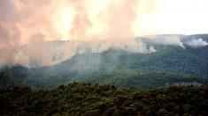 Las primeras llamas de los incendios de Grecia fueron en Kineta, cerca de la capital, Atenas. (AFP)