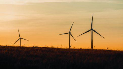 uno de los puntos más relevantes de Siemens Gamesa para 2025 es que la huella de carbono de la compañía sea neutra