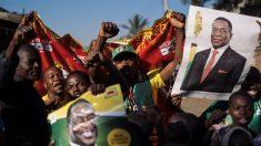 Seguidores del presidente electo de Zimbabue, Emmerson Mnangagwa, celebran su supuesto triunfo en la calle. (AFP)
