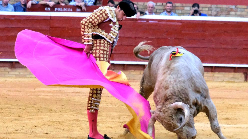 Perera durante su faena al toro que indultó (Foto: EFE).
