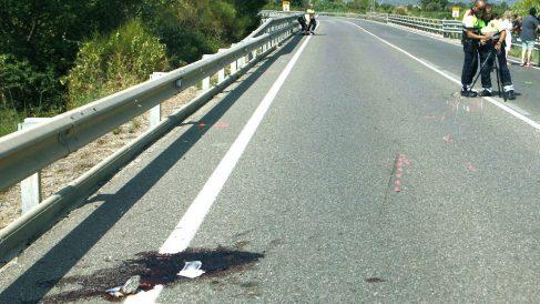 Imagen del lugar en el que se produjo el doble atropello mortal de los ciclistas (Foto: EFE).