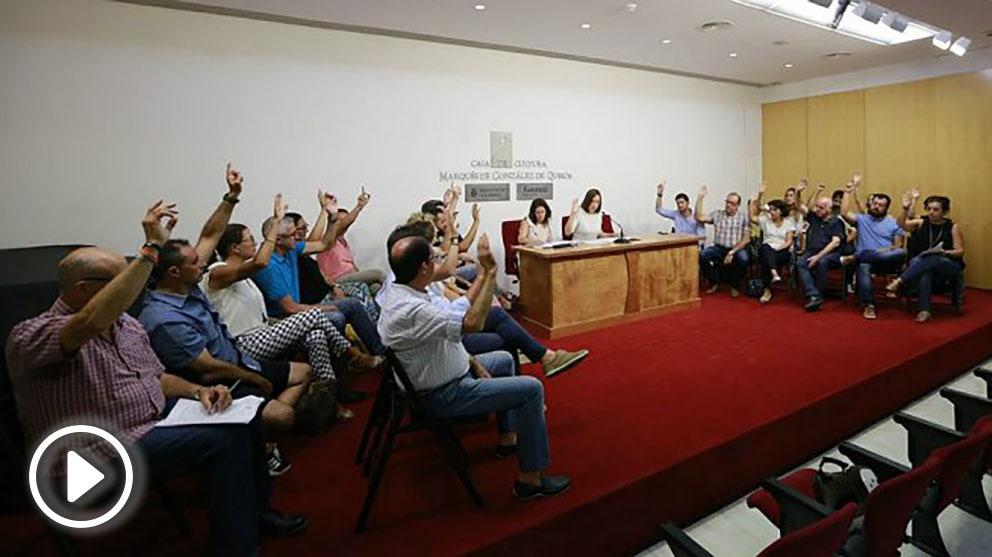 El pleno del Ayuntamiento de Gandía unánime ante el incendio de Llutxent. (EP)