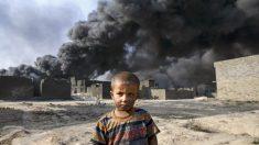 El 20 de agosto de 1988 se declara el alto al fuego en la guerra entre Irán e Irak | Efemérides del 20 de agosto de 2018
