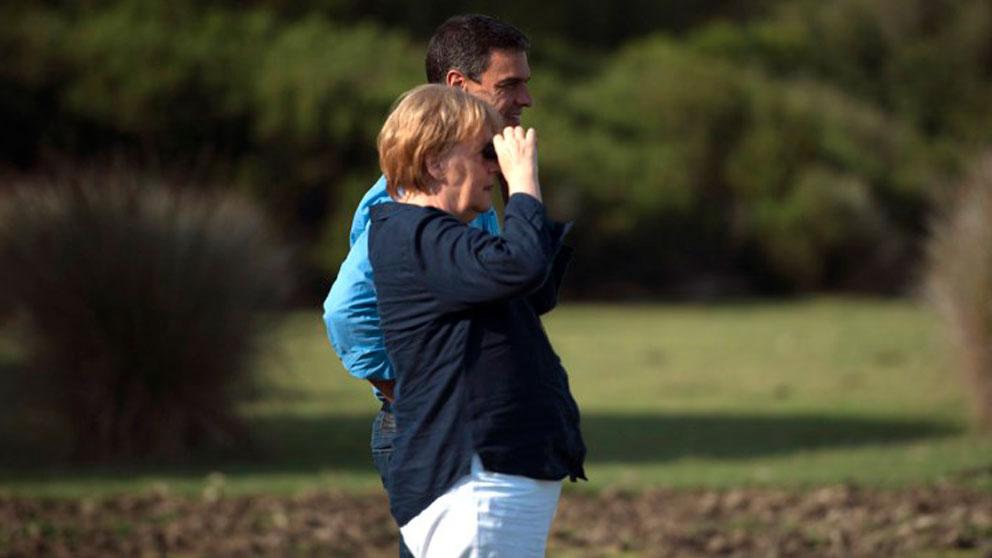Angela Merkel y Pedro Sánchez en una reunión durante el verano en el coto de Doñana. Foto: AFP