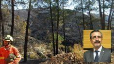 Los montes quemados del incendio de Llutxent y José María Ángel, director de Emergencias de la Comunidad Valenciana.