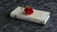Los versos endecasílabos son muy usados en la literatura.