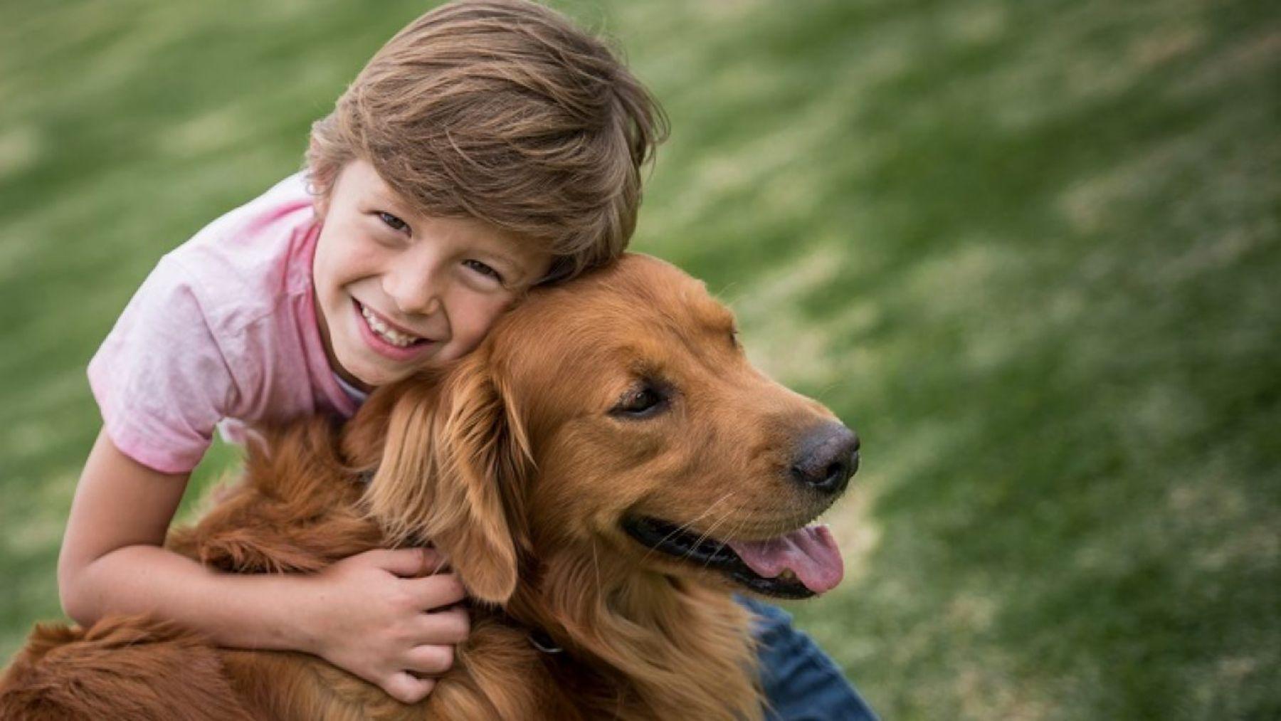Qué tipo de responsabilidades pueden tener los niños con los perros