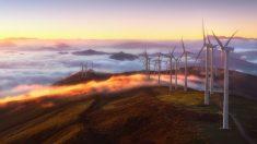 Analizamos las ventajas y desventajas de la energía eólica