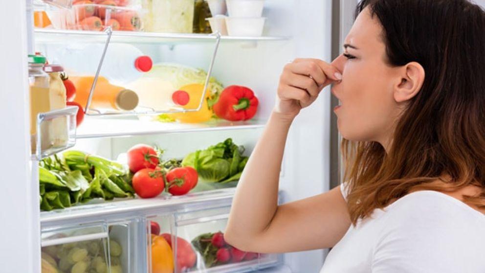 Remedios y trucos para evitar los malos olores en el frigorifico