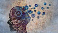 ¿Qué has de hacer para saber la edad mental?
