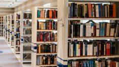 Las instalaciones que posee son aspectos para elegir el nuevo colegio para tus hijos