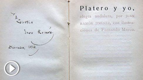 platero-655×368 copia