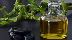 Cómo tirar el aceite de cocina usado
