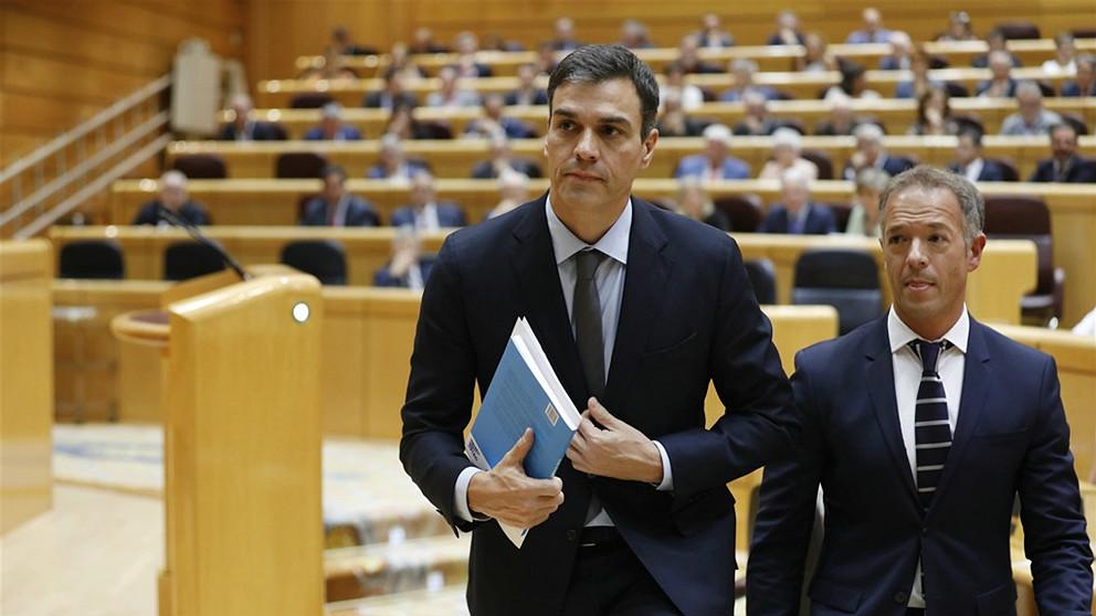 El presidente del Gobierno, Pedro Sánchez, en el Senado. (EP)