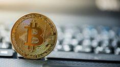Te explicamos los pasos para comprar Bitcoins por primera vez