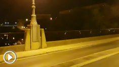 Lazos amarillos en Logroño, aparecidos de madrugada en el Puente de Piedra.