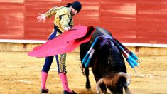 Padilla durante una de sus faenas este viernes en Palencia (Foto: EFE).