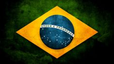 Elecciones brasileñas