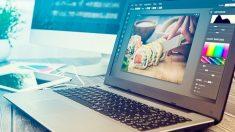 Todos los pasos para saber cómo  vectorizar una imagen