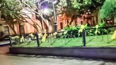 Los lazos amarillos atados a las barandillas de la céntrica Plaza de Mina, en Cádiz.