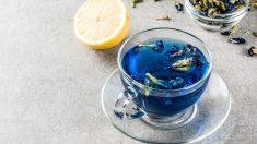 El té azul es ideal como complemento en las dietas de adelgazamiento.