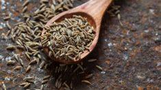 La alcaravea es una especia con diversas propiedades