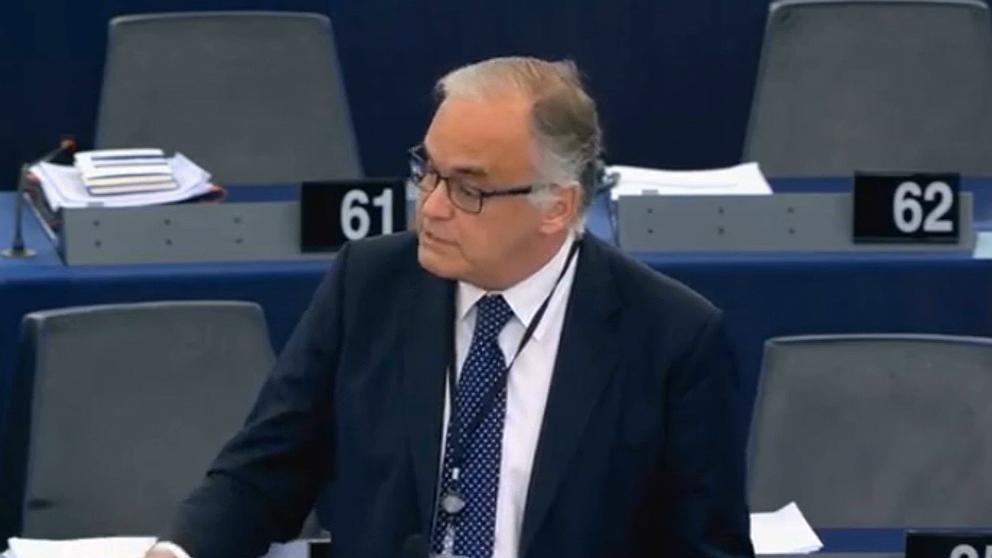 Esteban González Pons, líder del PP en el Parlamento Europeo. (EP)