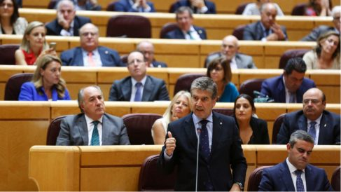 Grupo popular en el Senado (RRSS).