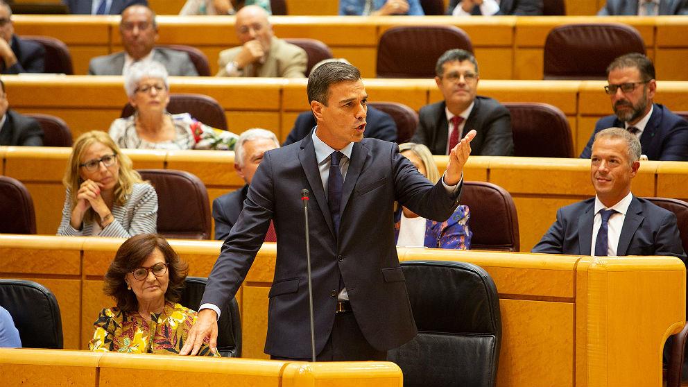 Pedro Sánchez, presidente del Gobierno, en el pleno del Senado. (EP)