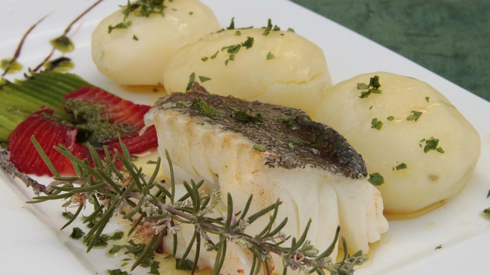 pescados para comer en el embarazo
