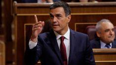 Pedro Sánchez esta mañana en el Congreso (EFE).