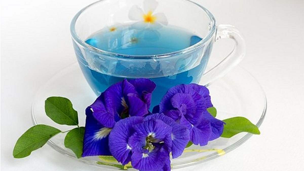 Propiedades del té azul