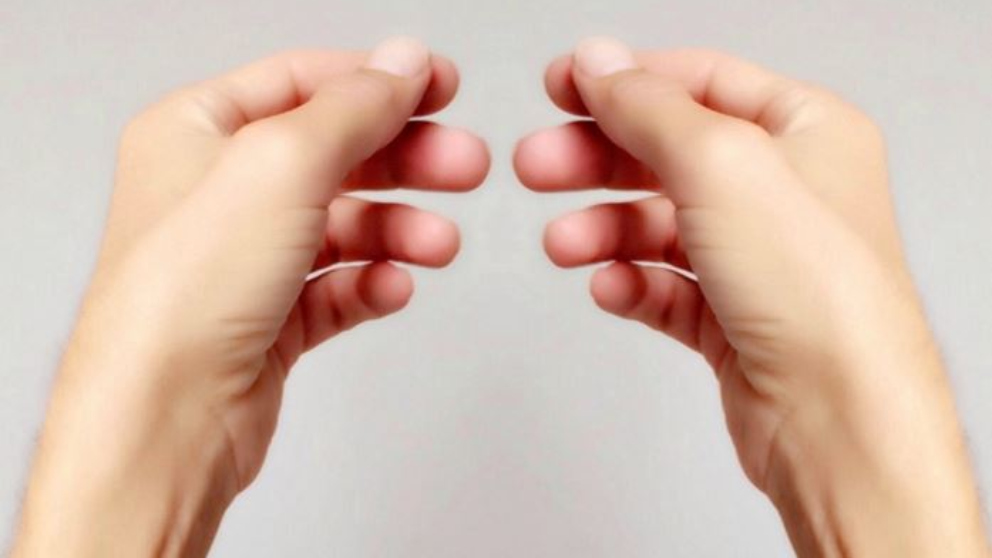 La forma de nuestras manos dice mucho de nosotros.