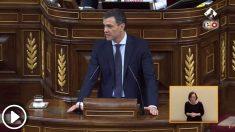 El actual presidente del Gobierno, Pedro Sánchez, durante la moción de censura a Mariano Rajoy