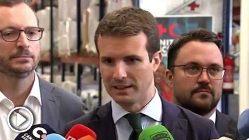 Pablo Casado, presidente del PP. (TW)