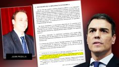Cita del artículo de Sánchez y Padilla que el presidente del Gobierno omitió en su tesis.